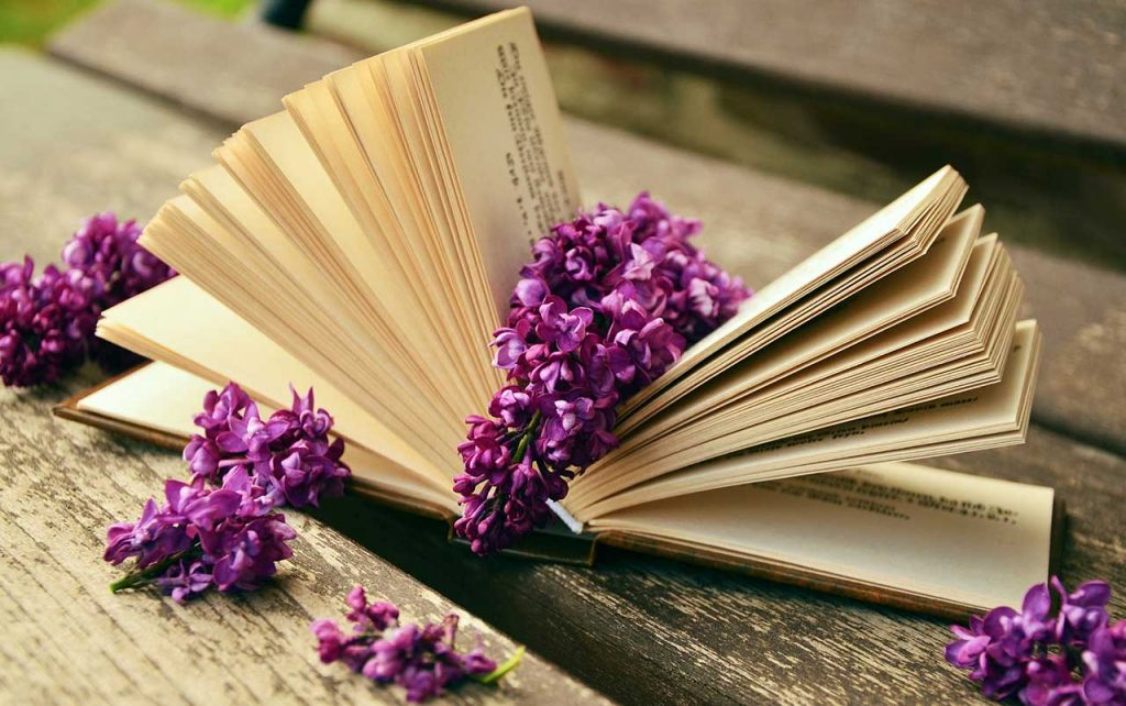 Open book sitting on a wooden park bench, surrounded by purple lilacs.