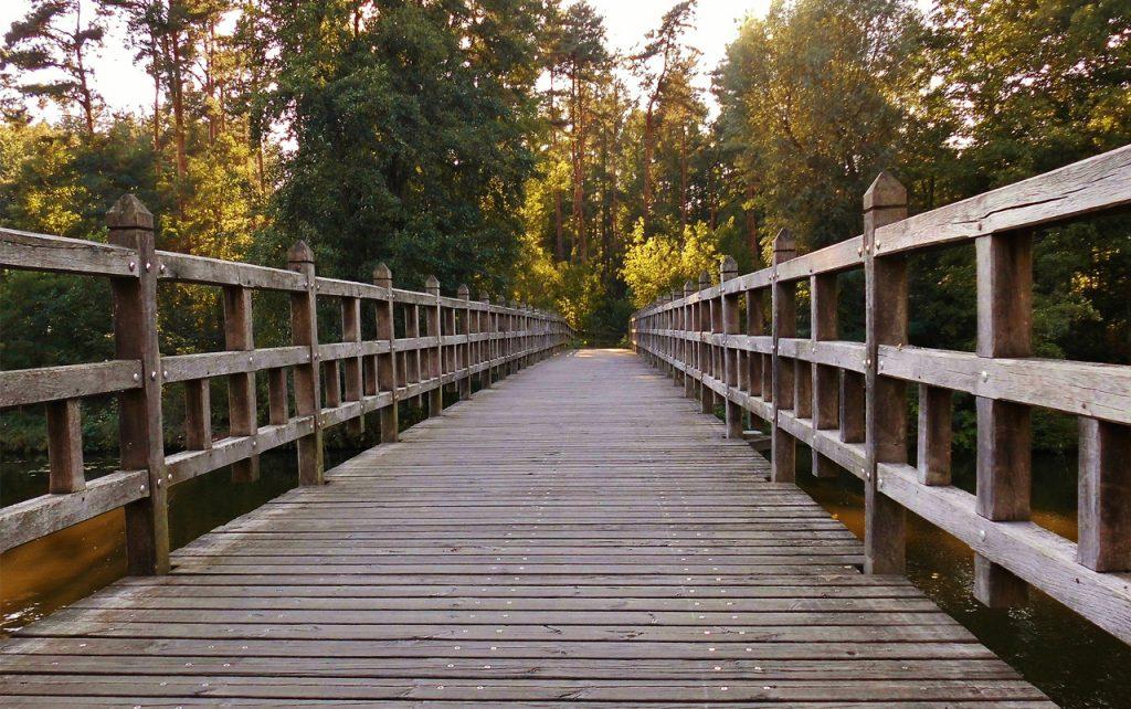 Wooden walking bridge extending off into the distance.