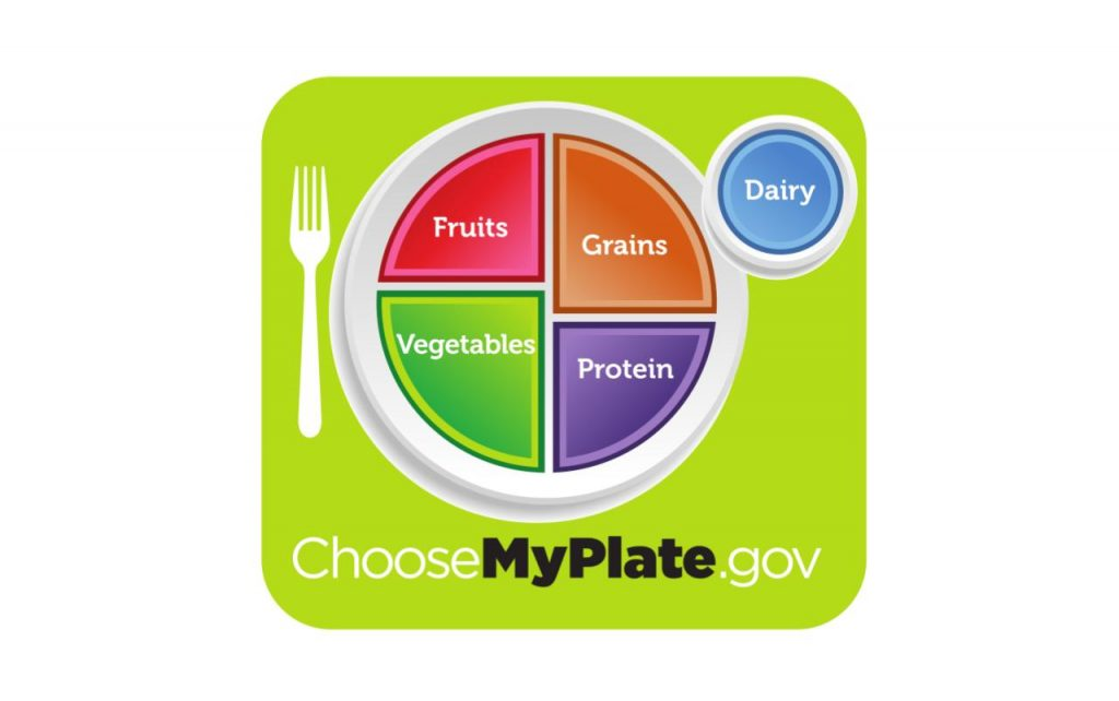 MyPlate graphic displaying a circular plate with fruits, vegetables, grains, and protein listed on it. A smaller circle is depicted for dairy.